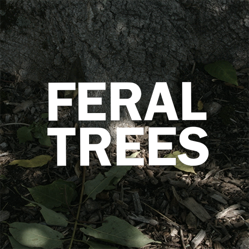 Feral Trees