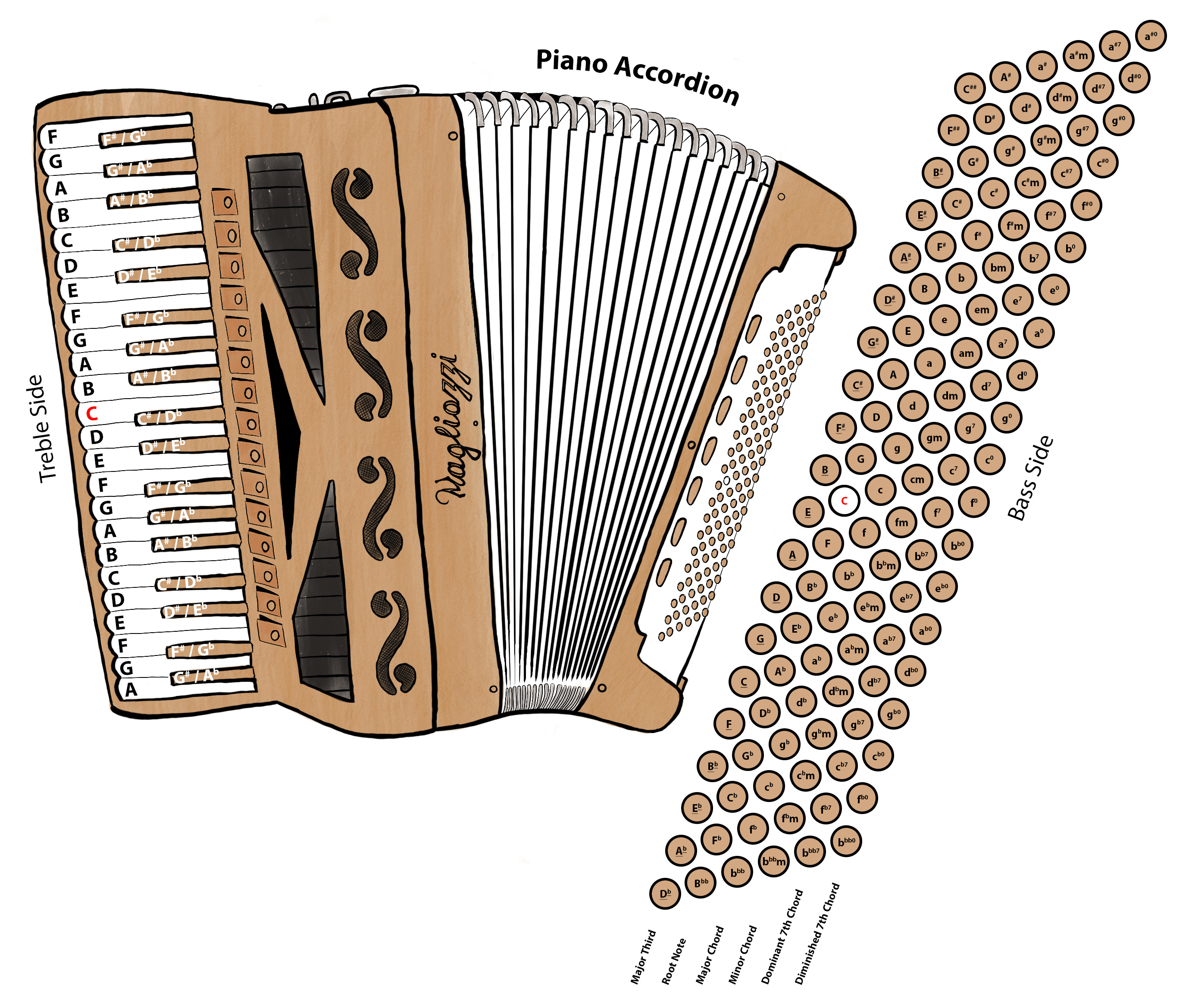 Piano accordion diagram cristoforo magliozzi there are chromatic accordions with buttons on both sides and there are piano accordions with buttons on one side this diagram was an attempt to indicate pooptronica